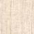 Rojo Zoe
